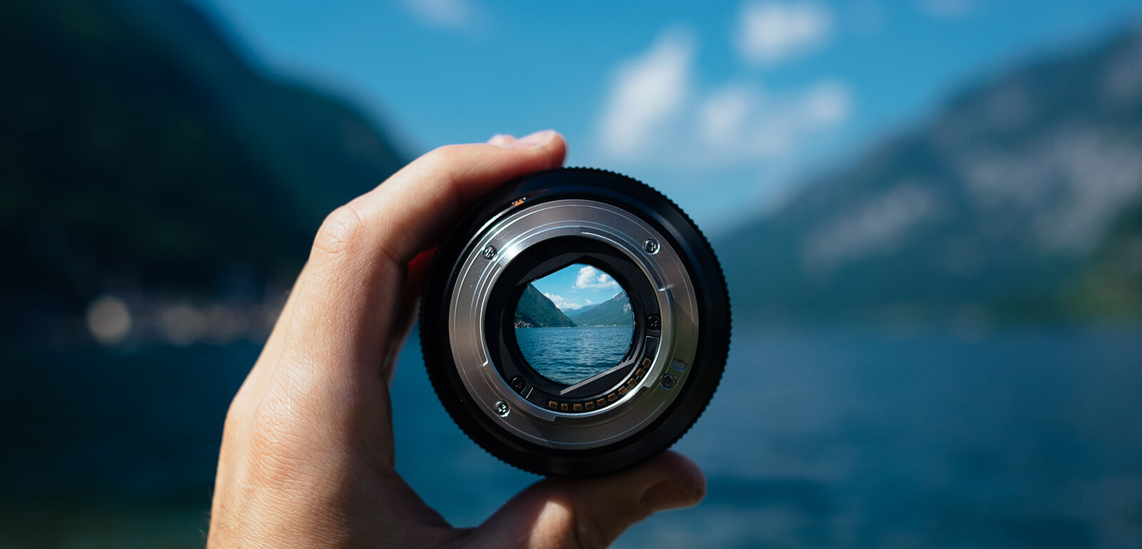business planning, strategic advisory, risk management